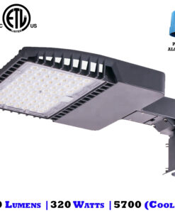 320 Watt Shoebox Light